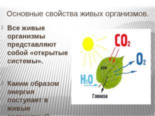 Основные свойства живых организмов. Все живые организмы представляют собой «о