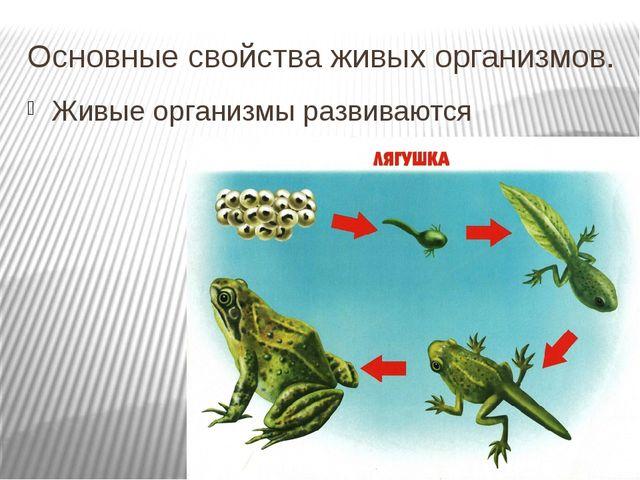 Основные свойства живых организмов. Живые организмы развиваются