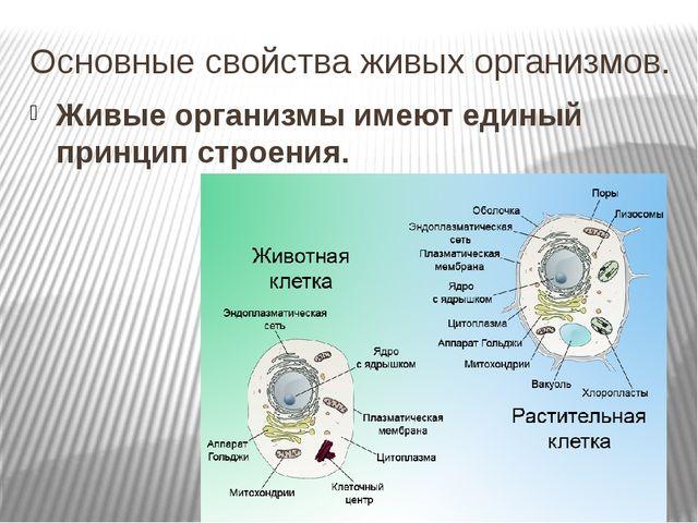 Основные свойства живых организмов. Живые организмы имеют единый принцип стро...