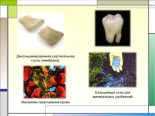 Декальцинированная кортикальная кость (мембрана) Кальциевые соли для минераль