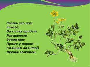 Звать его нам нечего, Онитак придет, Расцветет доверчиво Прямо уворот— Со