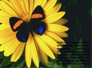 Бабочки не могут жить без цветов, потому что питаются нектаром. Но и цветам п