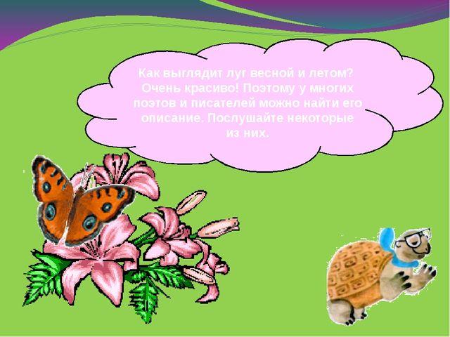 Как выглядит луг весной и летом? Очень красиво! Поэтому у многих поэтов и пис...