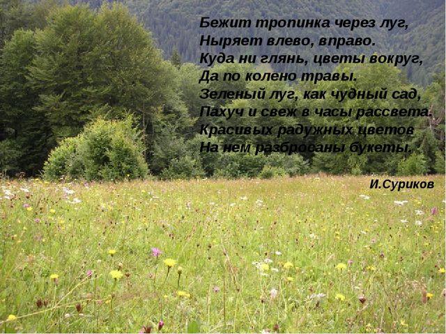 Бежит тропинка через луг, Ныряет влево, вправо. Куда ни глянь, цветы вокруг,...