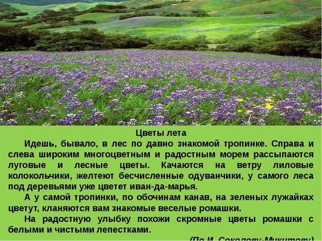 Цветы лета Идешь, бывало, в лес по давно знакомой тропинке. Справа и слева ш...