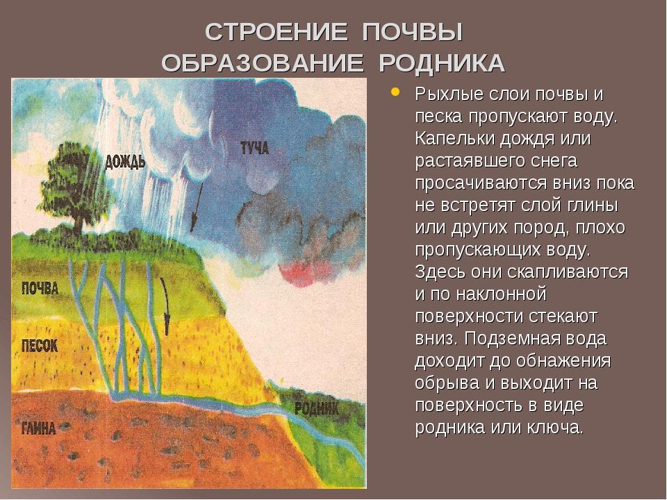 СТРОЕНИЕ ПОЧВЫ ОБРАЗОВАНИЕ РОДНИКА Рыхлые слои почвы и песка пропускают воду....