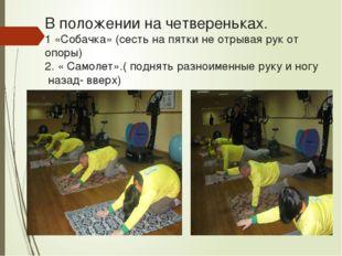 В положении на четвереньках. 1 «Собачка» (сесть на пятки не отрывая рук от оп