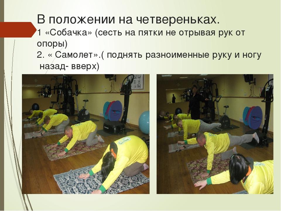 В положении на четвереньках. 1 «Собачка» (сесть на пятки не отрывая рук от оп...