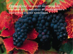 Глюкозу ещё называют виноградным сахаром из-за высокого её содержания в разли