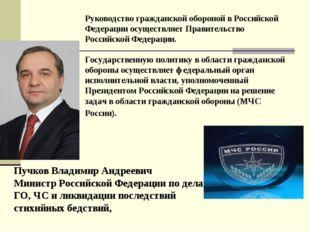 Руководство гражданской обороной в Российской Федерации осуществляет Правител