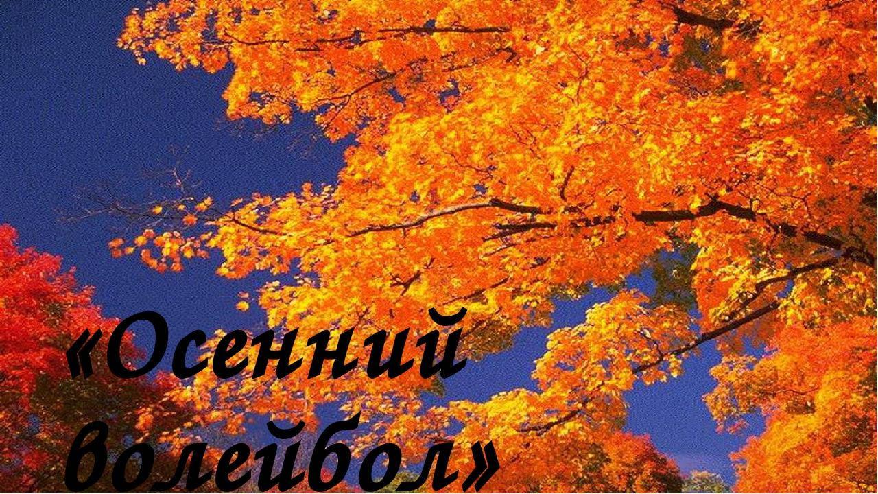 «Осенний волейбол»
