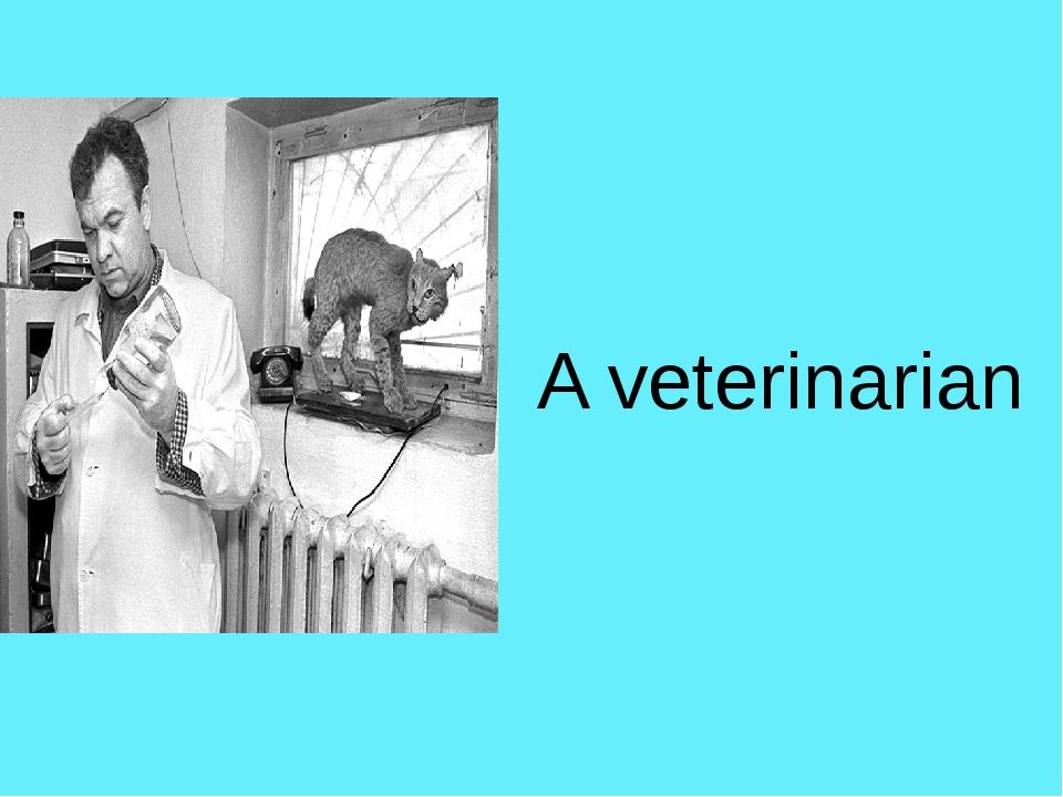 A veterinarian