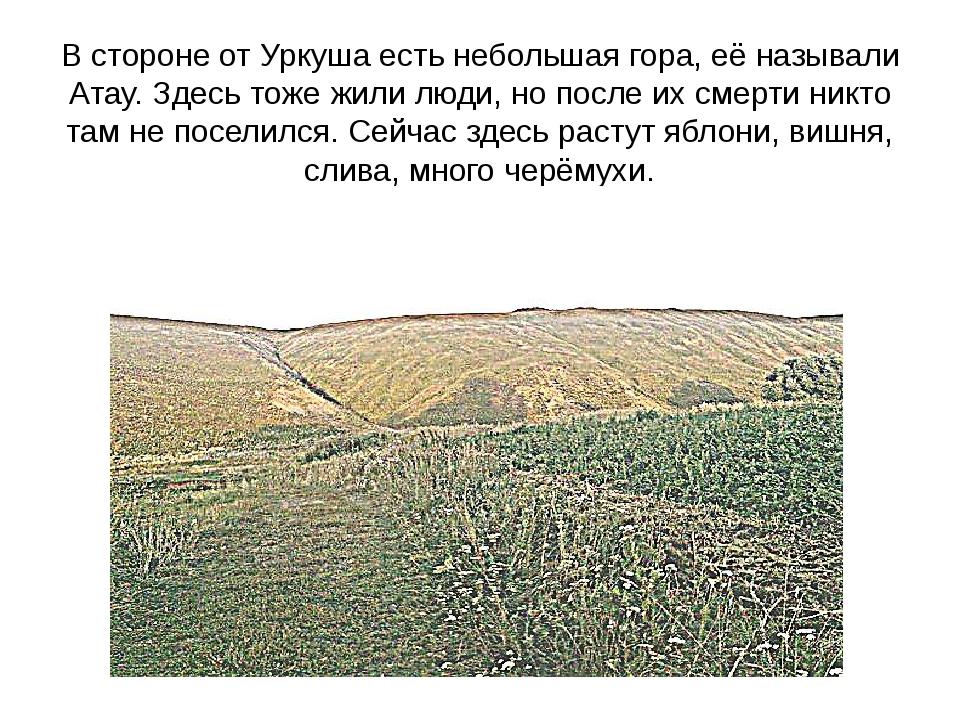 В стороне от Уркуша есть небольшая гора, её называли Атау. Здесь тоже жили лю...