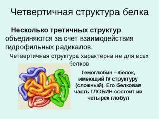 Четвертичная структура белка Несколько третичных структур объединяются за сче
