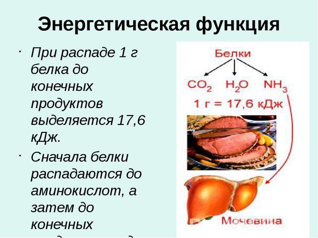 Энергетическая функция При распаде 1 г белка до конечных продуктов выделяется...