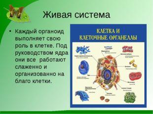 Живая система Каждый органоид выполняет свою роль в клетке. Под руководством