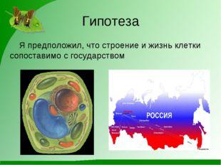 Гипотеза Я предположил, что строение и жизнь клетки сопоставимо с государством
