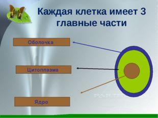 Каждая клетка имеет 3 главные части Оболочка Цитоплазма Ядро
