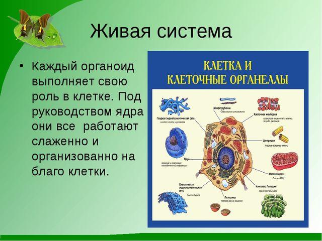 Живая система Каждый органоид выполняет свою роль в клетке. Под руководством...