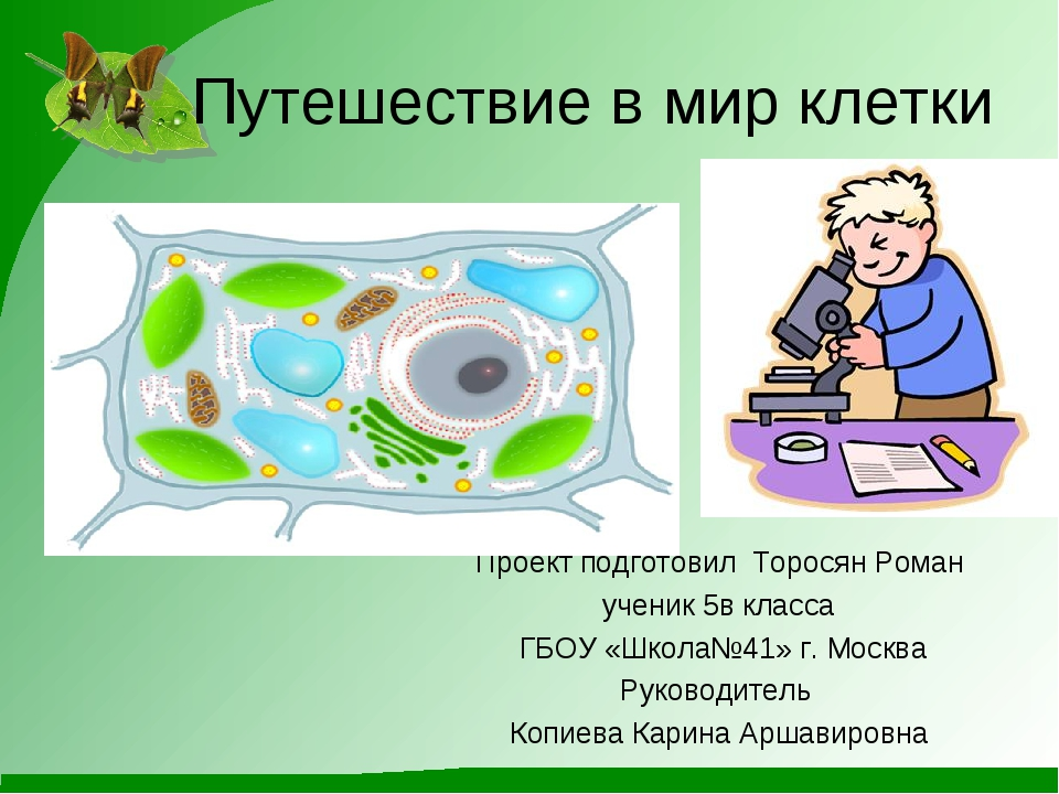 Путешествие в мир клетки Проект подготовил Торосян Роман ученик 5в класса ГБ...