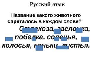 Русский язык Название какого животного спряталось в каждом слове? Стрекоза, з