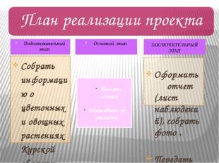 Подготовительный этап Собрать информацию о цветочных и овощных растениях Курс