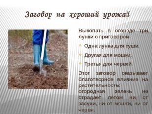 Заговор на хороший урожай Выкопать в огороде три лунки с приговором: Одна лун