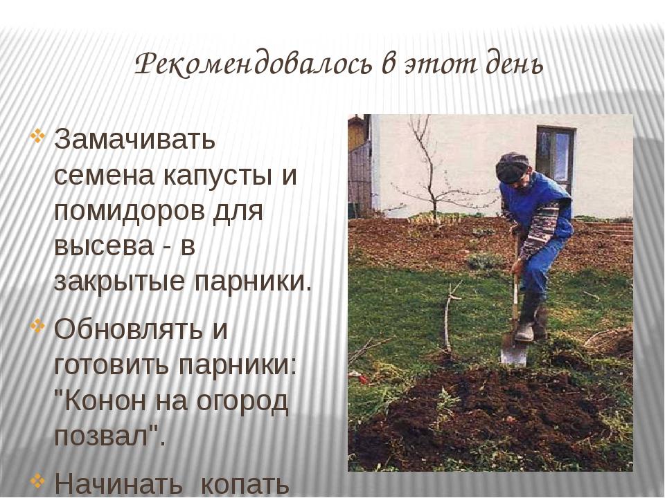 Рекомендовалось в этот день Замачивать семена капусты и помидоров для высева...