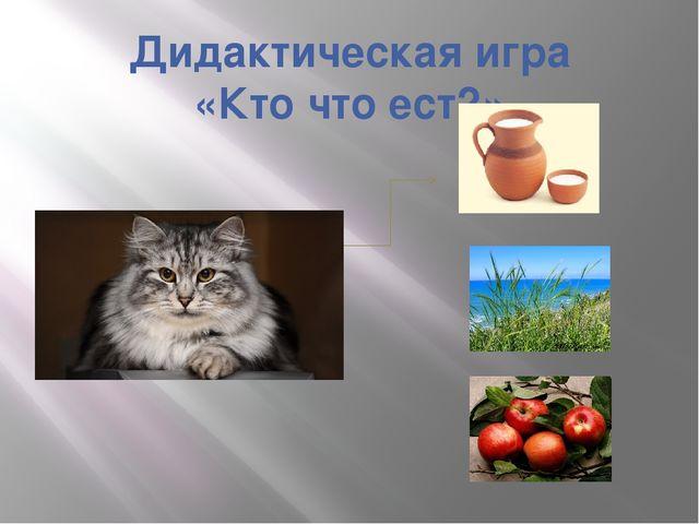 Дидактическая игра «Кто что ест?»