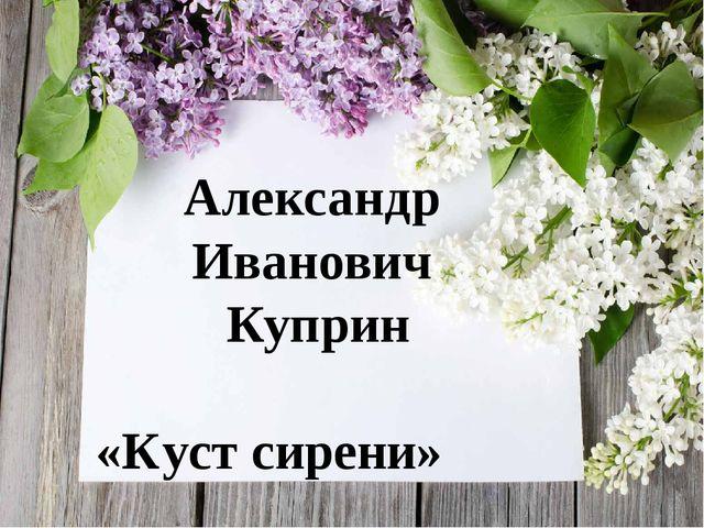 Александр Иванович Куприн «Куст сирени»