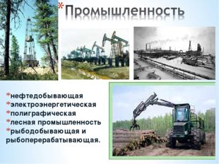 нефтедобывающая электроэнергетическая полиграфическая лесная промышленность р