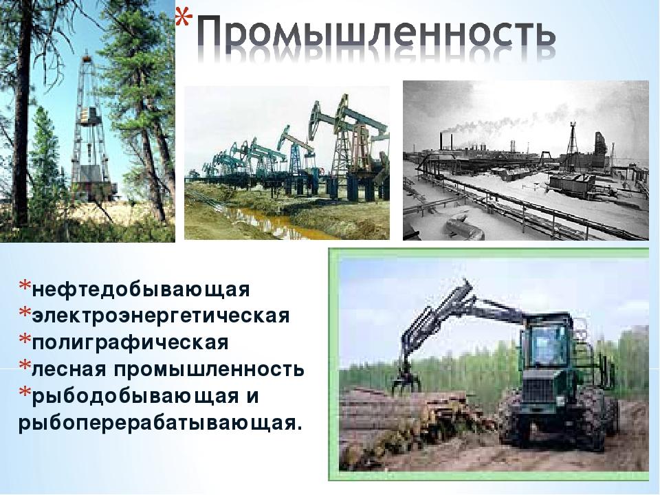 нефтедобывающая электроэнергетическая полиграфическая лесная промышленность р...