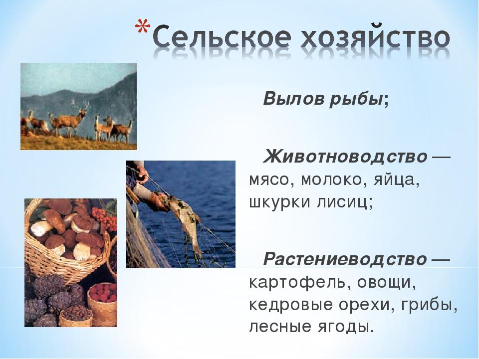 Вылов рыбы; Животноводство — мясо, молоко, яйца, шкурки лисиц; Растениеводств...