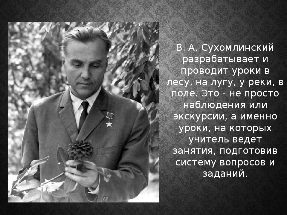 В. А. Сухомлинский разрабатывает и проводит уроки в лесу, на лугу, у реки, в...