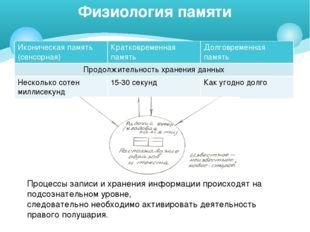 Физиология памяти Процессы записи и хранения информации происходят на подсозн