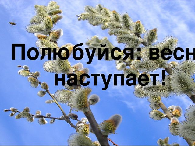 Полюбуйся: весна наступает!