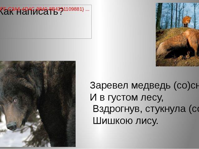 Заревел медведь (со)сна, И в густом лесу, Вздрогнув, стукнула (со)сна Шишкою...