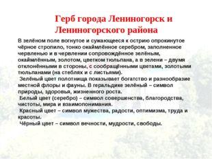 Герб города Лениногорск и Лениногорского района В зелёном поле вогнутое и суж
