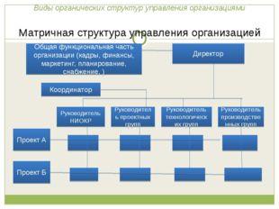 Виды органических структур управления организациями Матричная структура упра