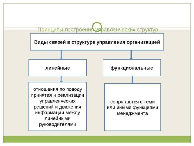 Принципы построения управленческих структур