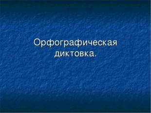 Орфографическая диктовка.
