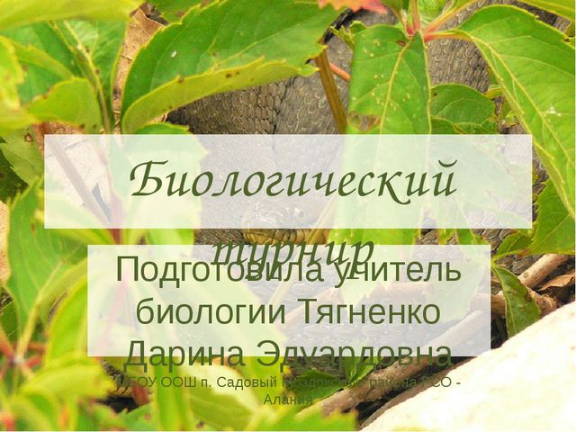 Биологический турнир Подготовила учитель биологии Тягненко Дарина Эдуардовна...