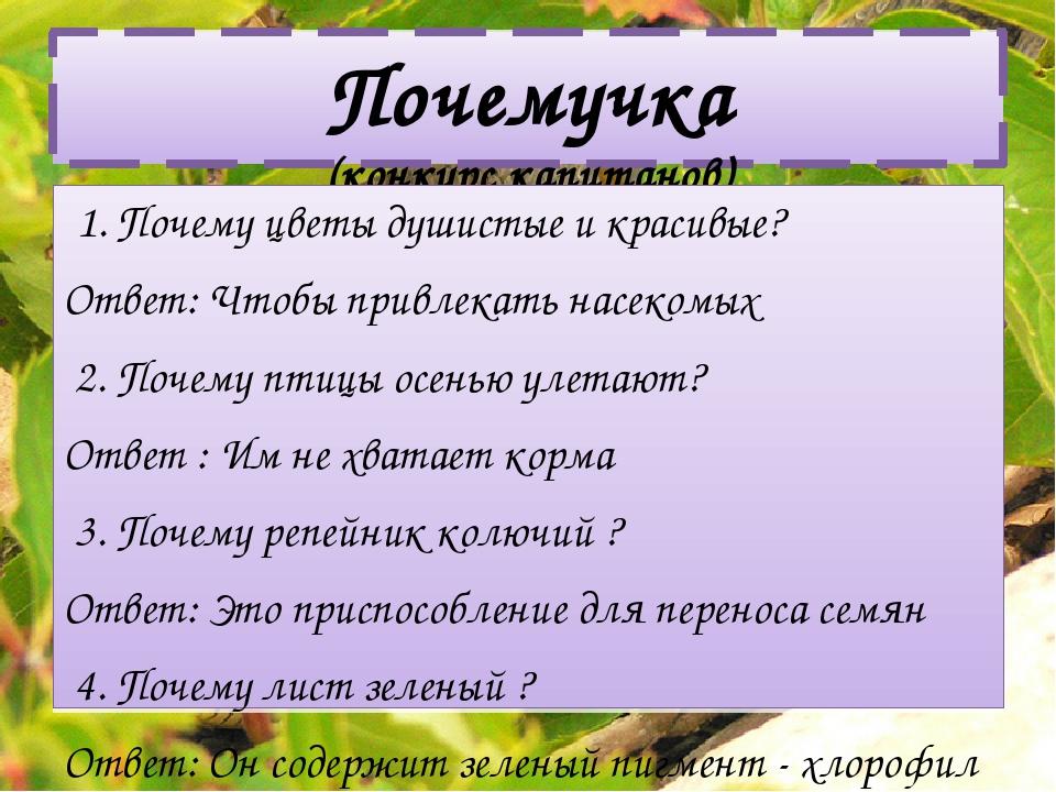 Почемучка (конкурс капитанов) 1. Почему цветы душистые и красивые? Ответ: Что...