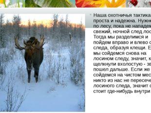 Наша охотничья тактика проста и надежна. Нужно идти по лесу, пока не нападем