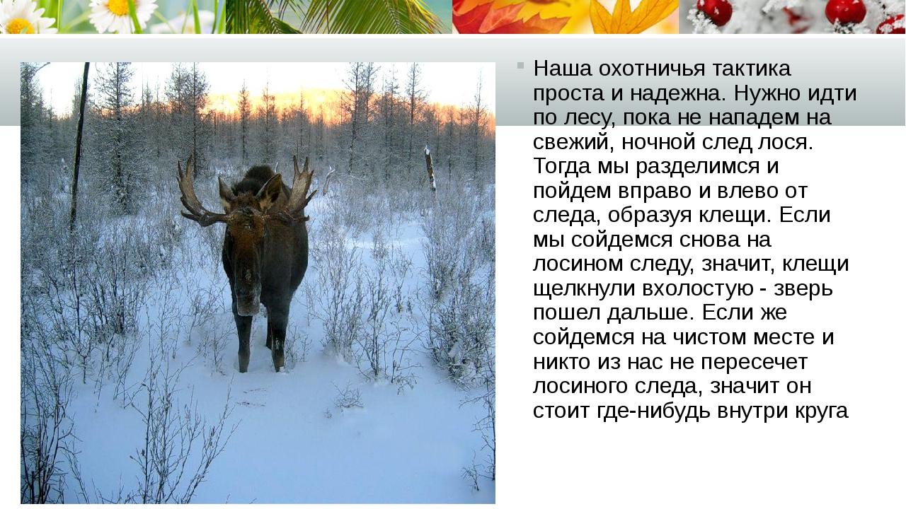 Наша охотничья тактика проста и надежна. Нужно идти по лесу, пока не нападем...