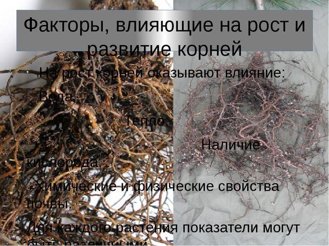 Факторы, влияющие на рост и развитие корней На рост корней оказывают влияние:...