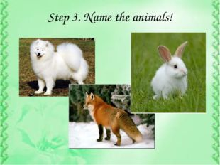 Step 3. Name the animals!