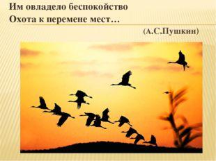 Им овладело беспокойство Охота к перемене мест… (А.С.Пушкин)