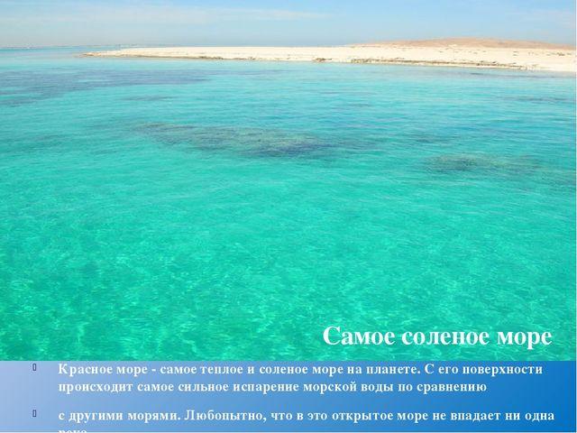 Красное море - самое теплое и соленое море на планете. С его поверхности прои...