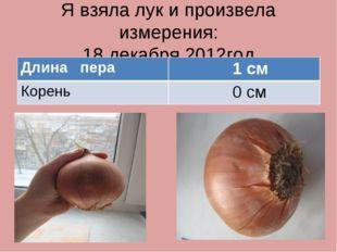 Я взяла лук и произвела измерения: 18 декабря 2012год Длина пера 1 см Корень